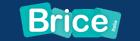 Brice Italia Srl logo